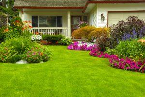 Come realizzare un giardino i consigli per il progetto migliore